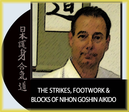 The Strikes, Footwork & Blocks of Nihon Goshin Aikido